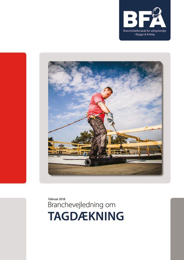 thumbnail of Tagdaekning-2018-rettet-maj-2019-print