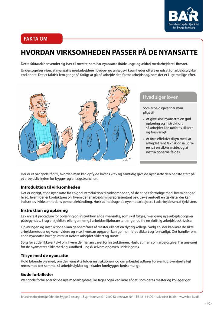 thumbnail of fakta-om-nyansatte-print