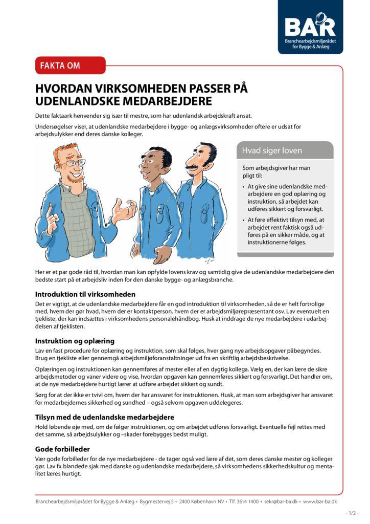 thumbnail of fakta-om-udenlandsk-arbejdskraft-print