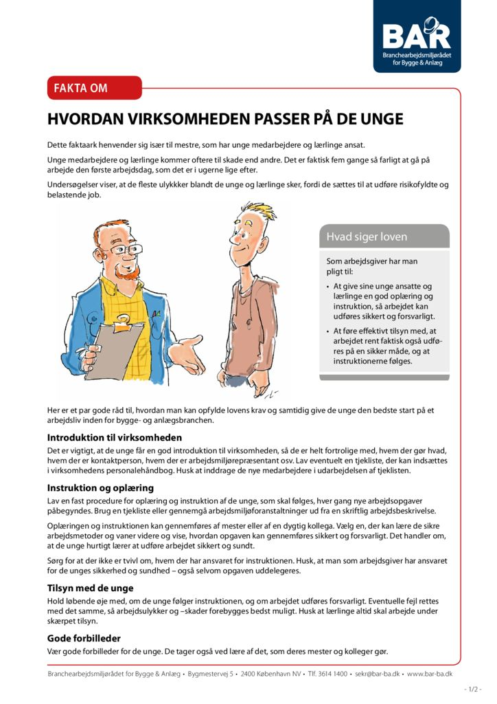 thumbnail of fakta-om-unge-print