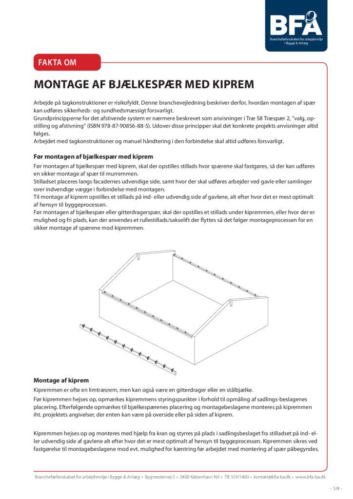 thumbnail of montage-af-bjaelkespaer-med-kiprem-print