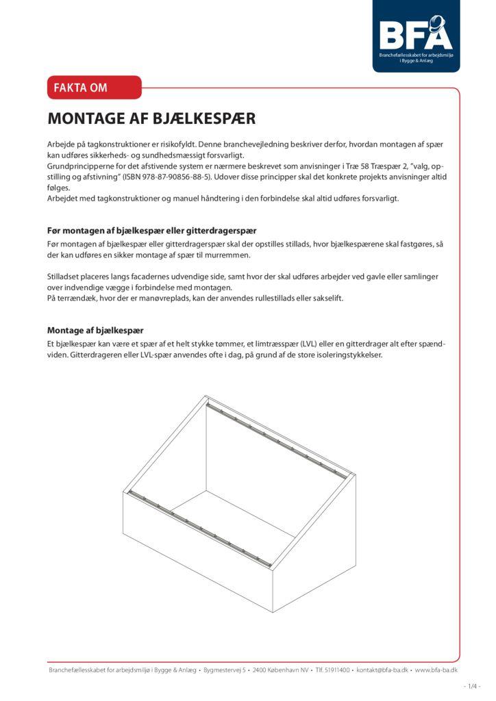thumbnail of montage-af-bjaelkespaer-print